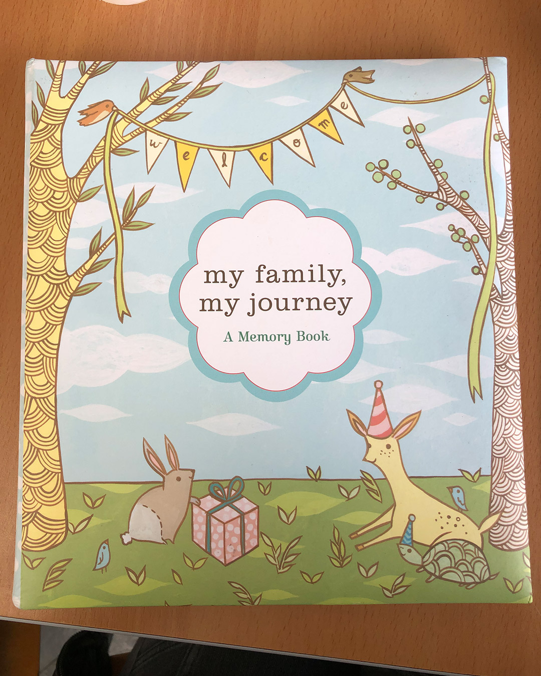 My Family, my journey A memory book